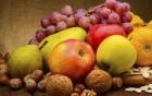 Vitaminlieferanten haben jetzt Hochsaison